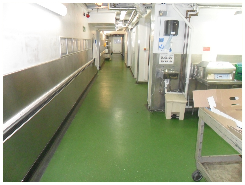 Dairy Industry flooring
